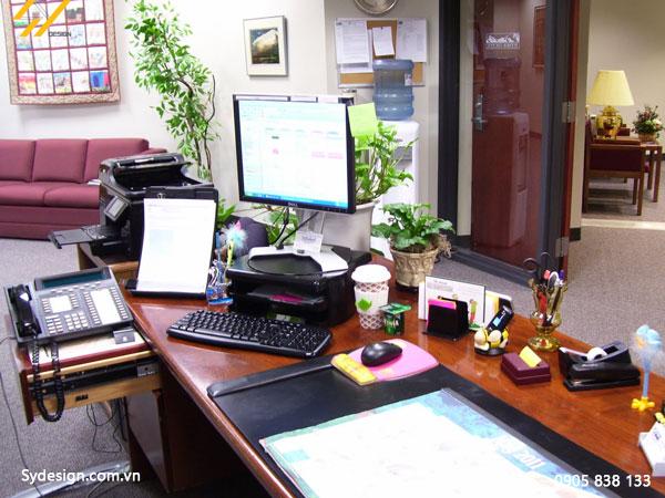 Điều kiện để sắp đặt cây xanh vào trong văn phòng là việc bạn nên tham khảo